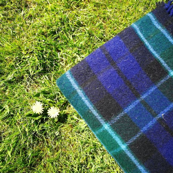 Checked Blue & Green Tartan Wool Blanket / Throw